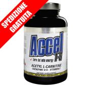 Accel 1g 100cpr -acetil l-carnitina multiveicolata con trasportatori antiossidanti