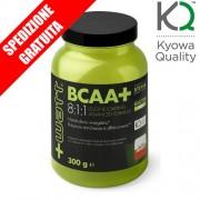 BCAA+ 8:1:1 POLVERE 300gr -aminoacidi ramificati purissimi ad elevato dosaggio di leucina + vitamine gruppo B-