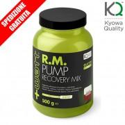 RM PUMP RECOVERY MIX 500g - bcaa creatina glutammina fosfatildiserina proteine -