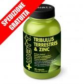 TRIBULUS TERRESTRIS & ZINC FORMULA STRONG 90caps - testoterone booster -