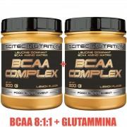 2 x BCAA COMPLEX 8:1:1 FORMULA 300gr